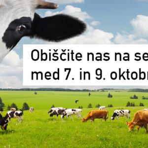 Jesenski kmetijski sejem Komenda 2016